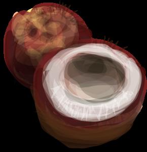 hrum-coconut